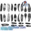 Décalcomanie 25  minies plumes noires sur format 13.5x10cm à cuire en fusing