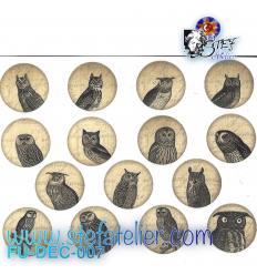 Décalcomanie 15 petites chouettes en cercle à cuire en fuisng, diamètre environ 2.5 cm
